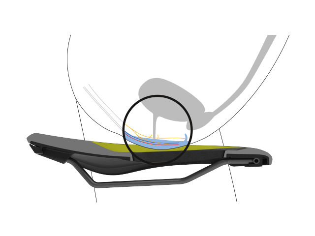 Position of a female pelvis in cross section with depiction of the nerve tracts, bones and soft tissue, illustrating the relief of an Ergon saddle.
