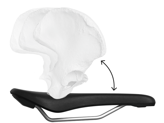Position of a female pelvis on a standard bicycle saddle.
